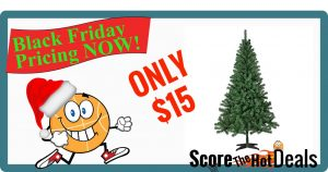 Trim A Home® 6' Peninsula Pine Unlit Christmas Tree - ONLY $15!